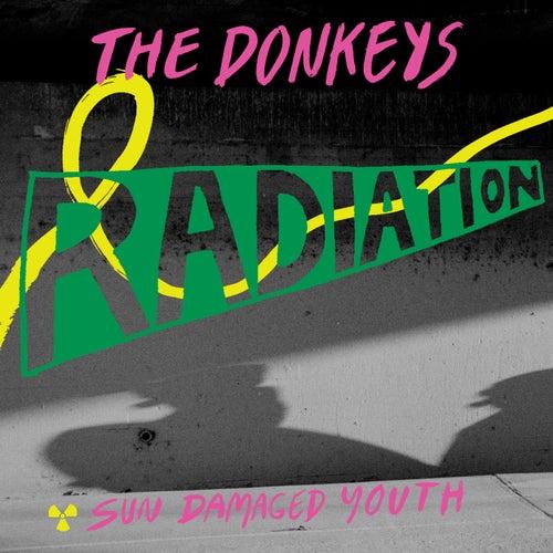 Radiation de The Donkeys