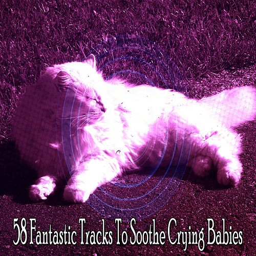 58 Fantastic Tracks to Soothe Crying Babies de Lullaby Land