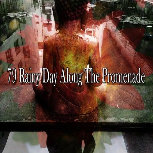 79 Rainy Day Along the Promenade de Nature Sounds Artists