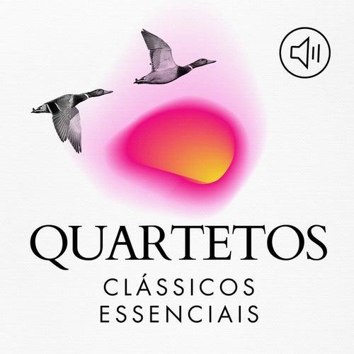 Quartetos Clássicos Essenciais by Various Artists