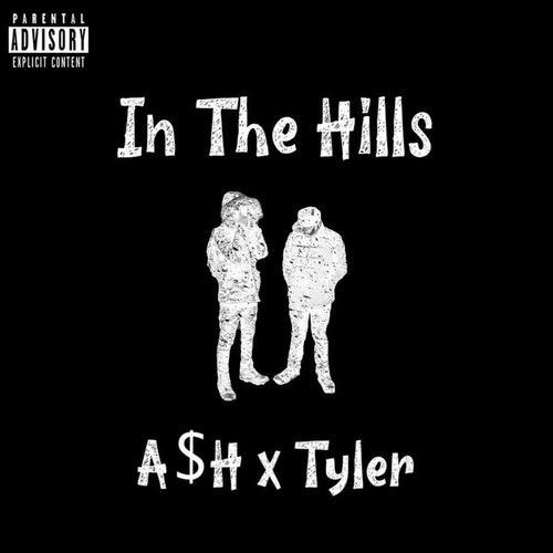 In The Hills de Ash