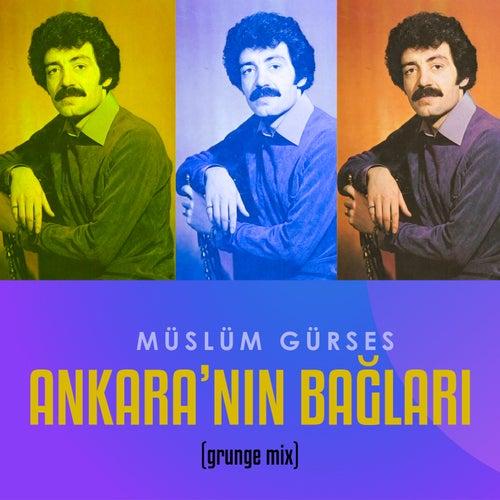 Ankara'nın Bağları (Grunge Mix) von Müslüm Gürses