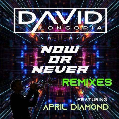 Now or Never Remixes de David Longoria