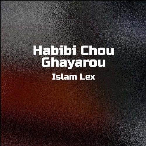 Habibi Chou Ghayarou by Islam Lex
