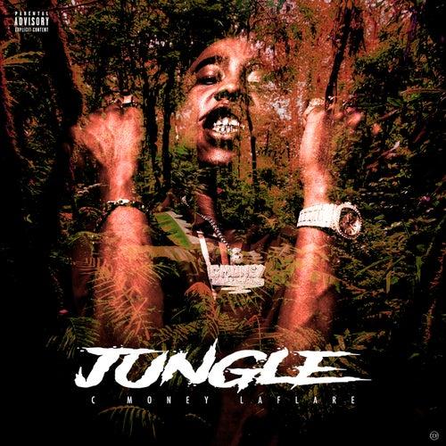 Jungle de C Money Laflare