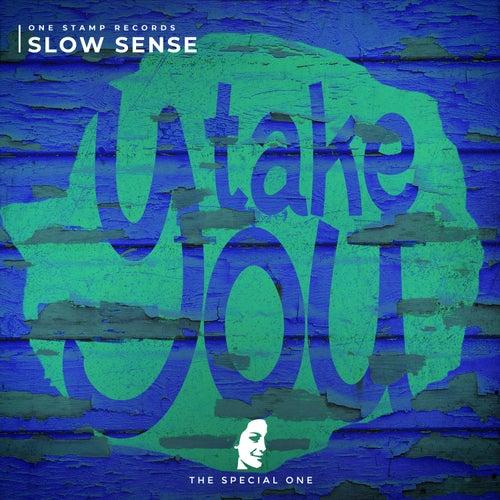 Take You von Slow Sense