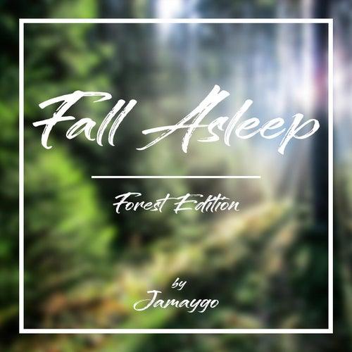 Fall Asleep von Jamaygo