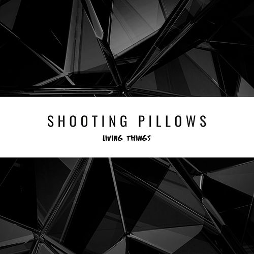 Shooting Pillows by Living Things