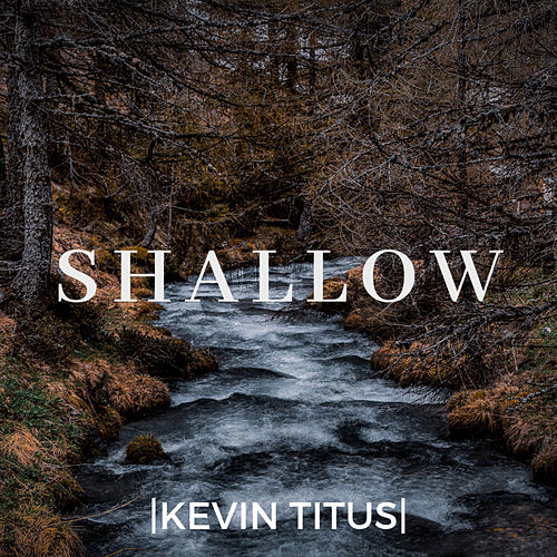Shallow (Instrumental Version) by Kevin Titus