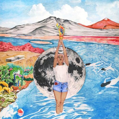 Life Is Long by Wallis Bird