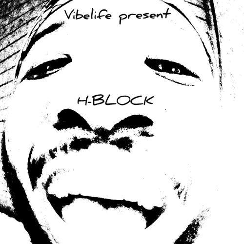H-block FDTM de Vibelife Ent