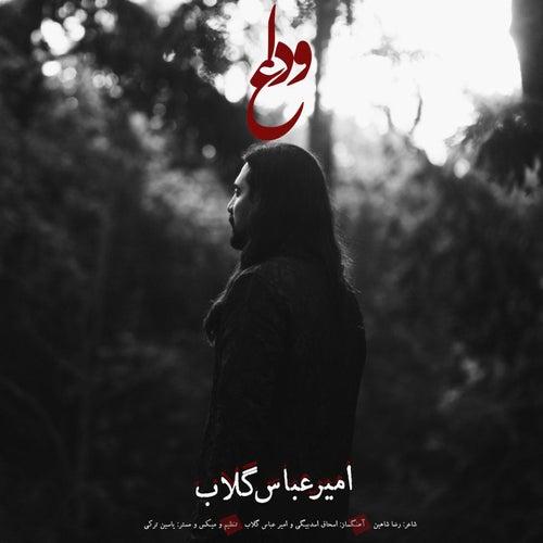 Vedaa by Amir Abbas Golab