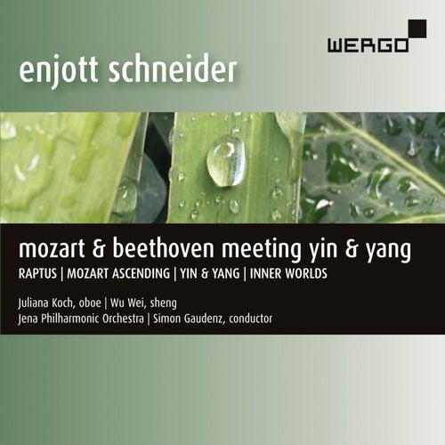 Enjott Schneider: Mozart & Beethoven Meeting Yin & Yang de Various Artists