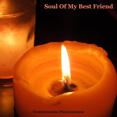 Soul Of My Best Friend von Venturesome Phenomenon