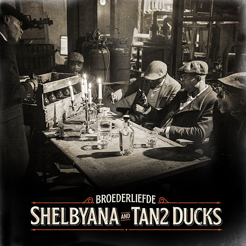Shelbyana / Tan2 Ducks von Broederliefde