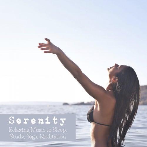 Serenity: Relaxing Music to Sleep, Study, Yoga, Meditation de Various Artists