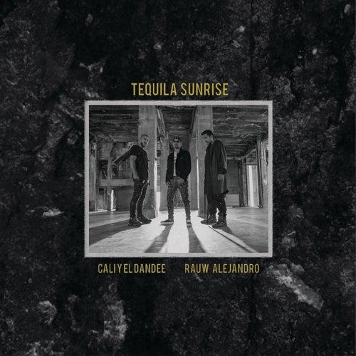 Tequila Sunrise by Cali Y El Dandee