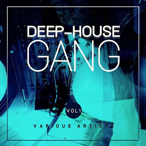 Deep-House Gang, Vol. 1 von Various Artists
