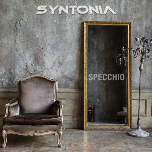 Specchio by Syntonia Band