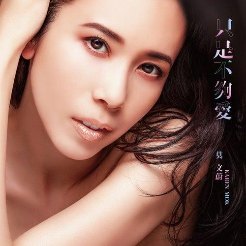 Not Enough Love (Theme song of 'Flying Tiger II') de Karen Mok