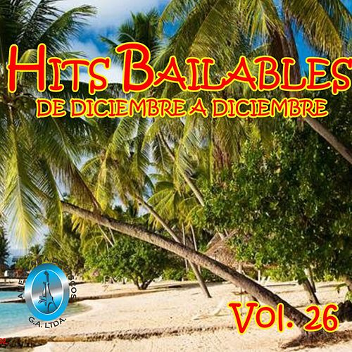 Hits Bailables de Diciembre a Diciembre, Vol. 26 de Various Artists