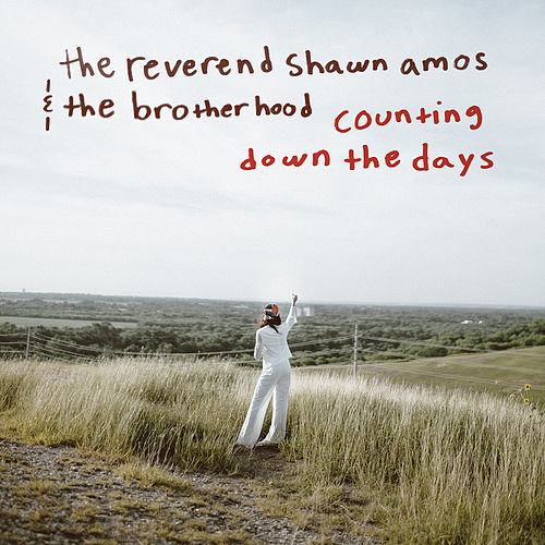 Counting Down the Days von The Reverend Shawn Amos