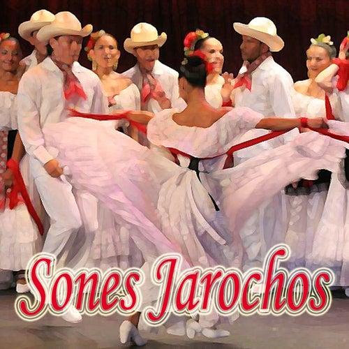 Sones Jarochos by Conjunto Rio Blanco