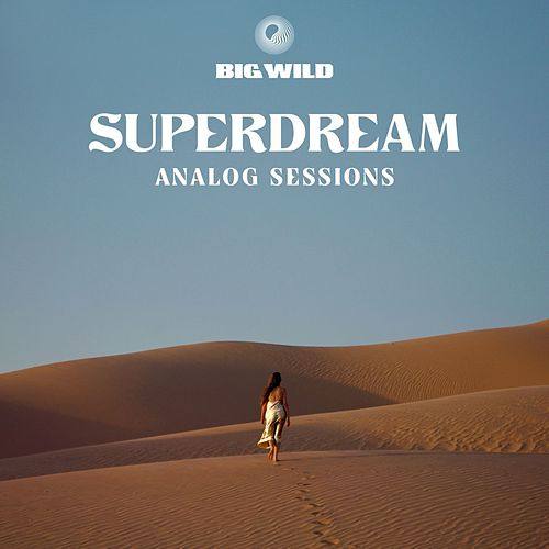 No Words (Analog Sessions) di Big Wild