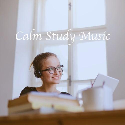 Calm Study Music de Various Artists