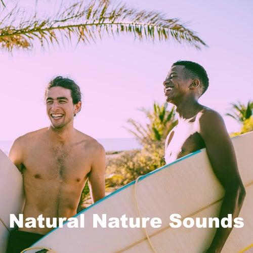 Natural Nature Sounds de Various Artists