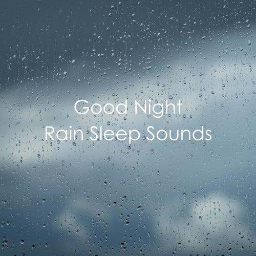 Good Night Rain Sleep Sounds de Various Artists
