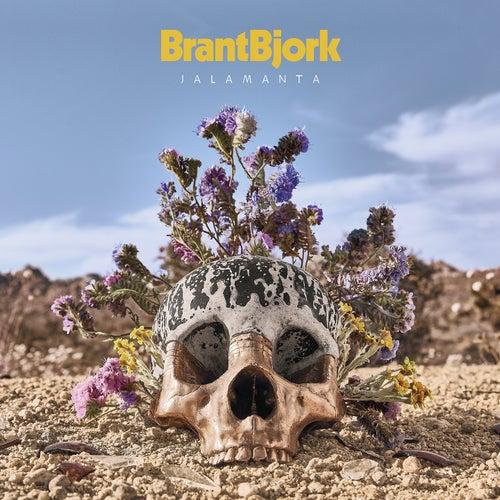 Jalamanta de Brant Bjork