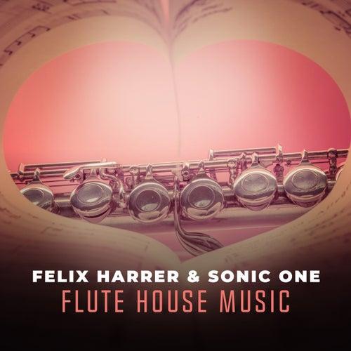 Flute House Music von Felix Harrer