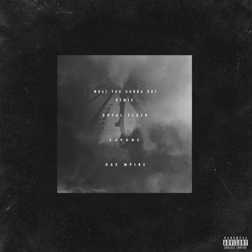 What You Gonna Do? (Remix) [feat. Capone & Royal Flush] de Dax Mpire