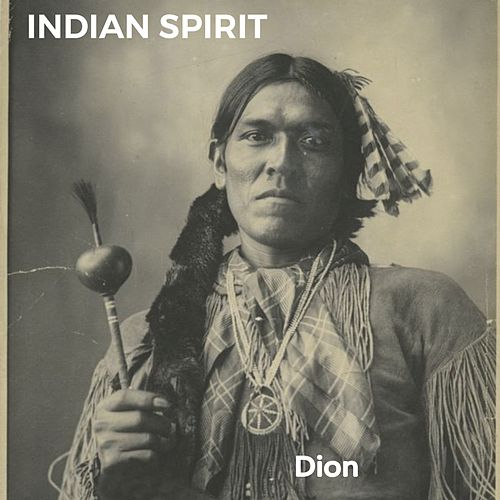Indian Spirit by Dion
