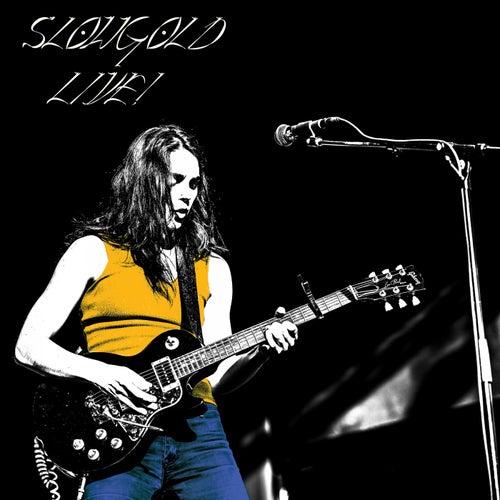 Rosor (Live) by Slowgold