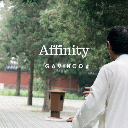 Affinity von Gavinco