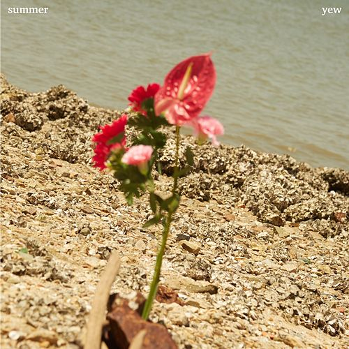 Summer by Yew