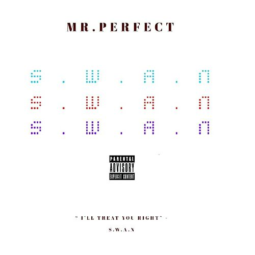 Mr.Perfect by Swan