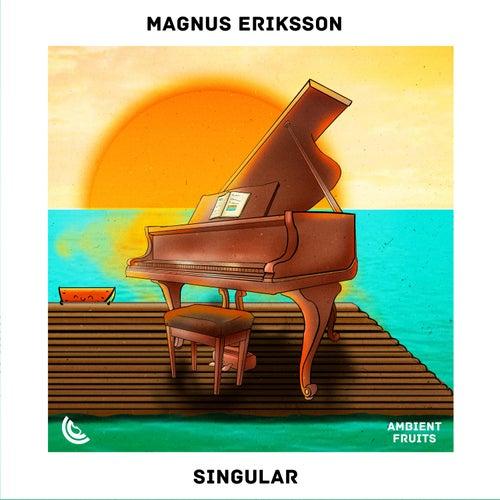 Singular von Magnus