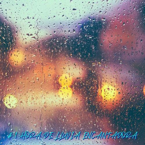 # 1 Hora De Lluvia Encantadora von Lluvia para Dormir