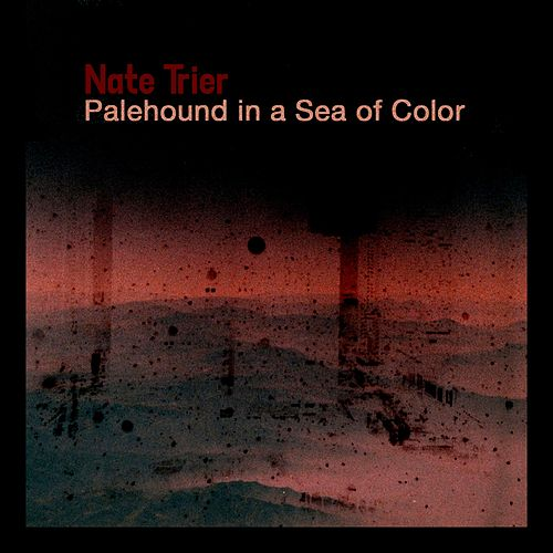 Palehound in a Sea of Color by Nate Trier