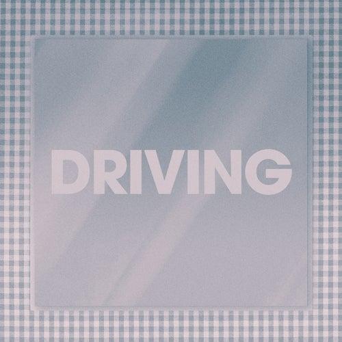 Driving de Poliça
