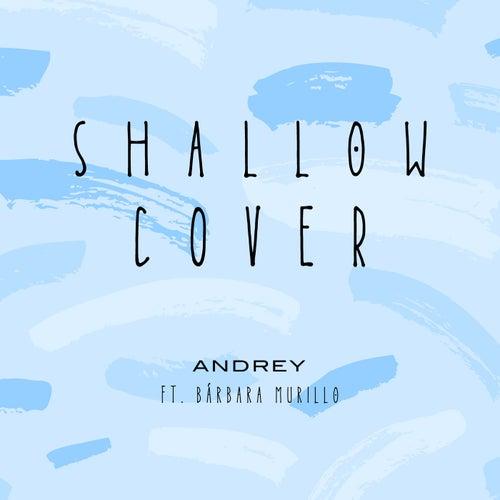 Shallow (Cover) de Andrey Oficial
