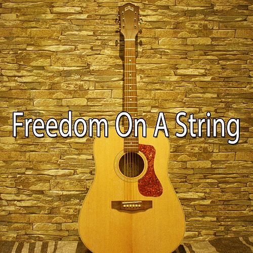 Freedom on a String by Instrumental
