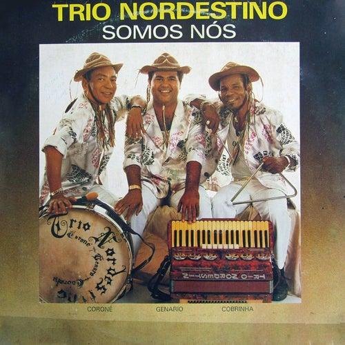 Somos Nós von Trio Nordestino
