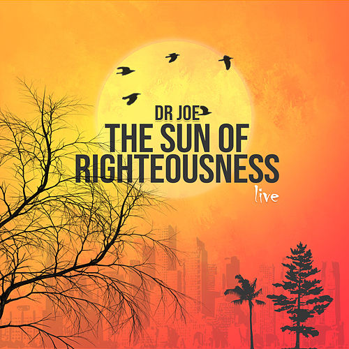 The Sun of Righteousness (Live) by Dr Joe