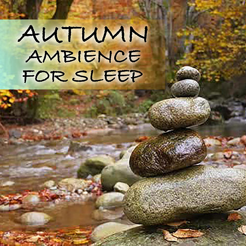 Autumn Ambience For Sleep by Various Artists