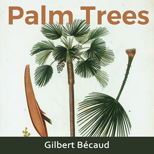 Palm Trees de Gilbert Becaud