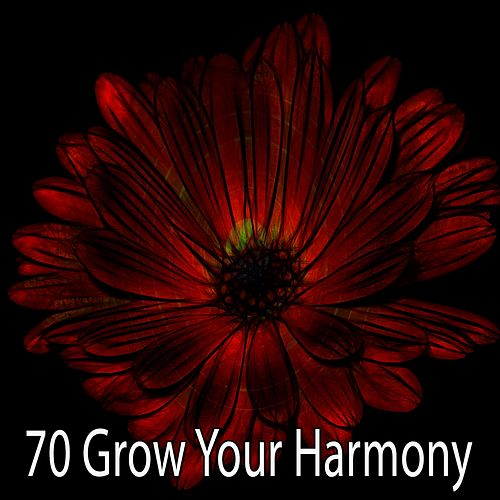 70 Grow Your Harmony by Asian Traditional Music